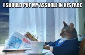 Long Day Memes - livememe com sophisticated cat