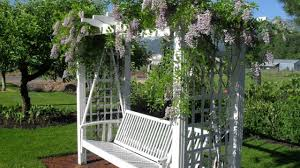 Arbors And Pergolas by 10 Best Flowering Vines For Arches Pergola Arbor And Trellis