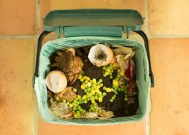 9 easy ways to cut down on waste everyday goodnet