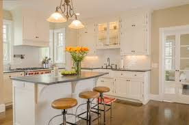 Painted White Kitchen Cabinets Door Hinges Beautiful Change Cabinet Hinges To Hidden Picture