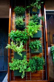 furniture marvelous phenomenal indoor herb gardens vertical