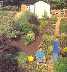 What Is A Backyard Garden Best 25 Plant Nursery Ideas On Pinterest Home Greenhouse Large