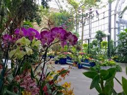 Us Botanical Gardens Dc Orchid Spectrum United States Botanic Garden