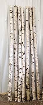 Amazon Decorative Birch Poles 4ft 4 Poles 1 1 2