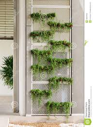 green wall royalty free stock image image 36040336