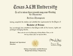 a m diploma frame a m gold engraved medallion diploma frame in