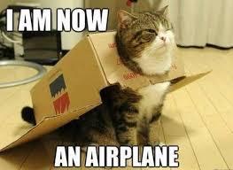 Fart Meme - amazing 23 cat fart meme wallpaper site wallpaper site