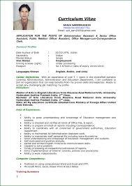 curriculum vitae professional template word educat saneme