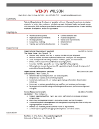 Sample Resume Objectives For Team Leader by Leadership Resume Examples