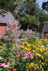 Summer Flower Garden Ideas - 90 best backyard garden images on pinterest gardening plants