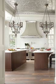 Transitional Kitchen Design Ideas Best 25 Transitional Ceiling Medallions Ideas On Pinterest