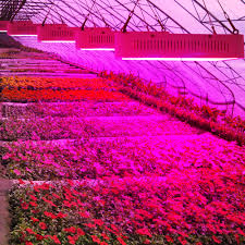 horticultural led grow lights high power full spectrum 400w 600w 800w led grow lights horticulture