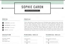 professional looking resume nardellidesign com
