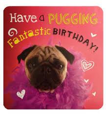 pug birthday card at www ilovepugs co uk post worldwide