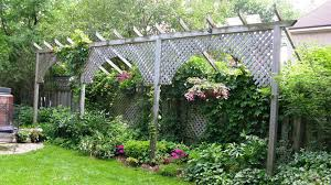 Small Backyard Landscaping Ideas For Privacy with Best Landscape Ideas For Privacy U2014 Emerson Design