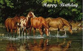 Horse Birthday Meme - happy birthday horse images