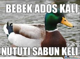 Meme Bebek - bebek adus kali by recyclebin meme center