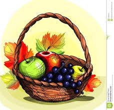 fruit in a basket fruit basket stock vector illustration of illustration 21995313