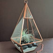 hanging copper glass prism air plant terrarium with large