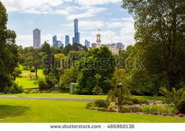 Botanical Gardens Melbourne Royal Botanic Gardens Melbourne Stock Images Royalty Free Images