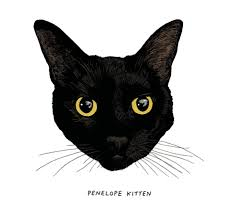 all black an illustrated study of black cats the