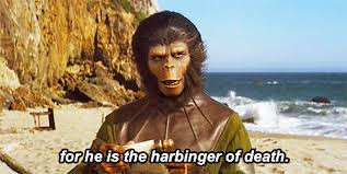 Planet Of The Apes Meme - movies planet of the apes gif find download on gifer