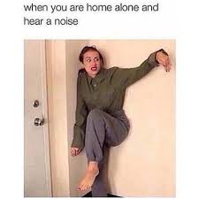 Funny Home Alone Memes - funny memes when you are home alone fun things to do when bored