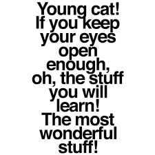26 best dr seuss quotes images on best quotes