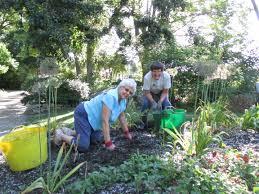 spirit halloween janesville wi volunteers abound rotary botanical gardens
