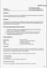 Sample Resume For Net Developer With 2 Year Experience by Cool Sap Fico Sample Resume 3 Years Experience 45 About Remodel