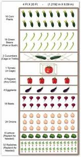 miraculous raised vegetable garden layout 4x8 on garden ideas with