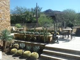 desert foothills landscape specializing in custom desert landscapes
