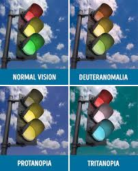 Is Color Blindness A Disability How People With Different Kinds Of Color Blindness See The World
