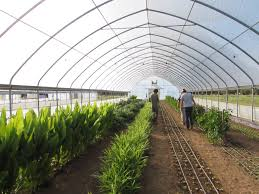 welcome to growing for market growing for market