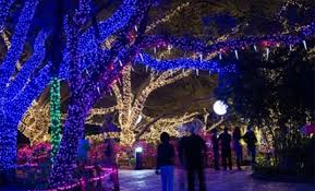 zoo lights houston 2017 dates the houston zoo lights illuminate on november 18
