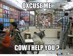 Memes India Maria - india by fringe meme center