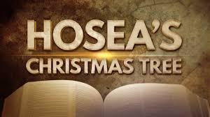 The Christmas Tree In The Bible - hosea u0027s christmas tree kosher pinterest christmas tree 119