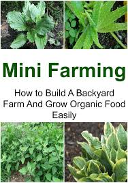 buy backyard farming the beginner u0026 39 s guide to create your own
