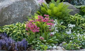 Rock Gardens Gravel And Rock Gardens