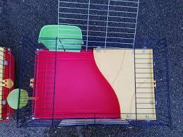 gabbie per conigli nani usate 2 gabbie per conigli nani da compagnia usate annunci perugia