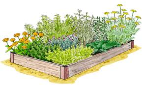 herbal garden how to freeze or dry herbs herb garden gardener s supply