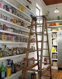 Modern Kitchen Pantry Designs - 47 cool kitchen pantry design ideas shelterness