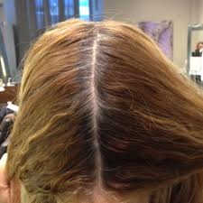 Hair Color To Cover Gray Addressing The Gray Expert Tips From Eva Scrivo Career Modern