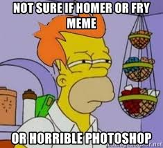 Fry Meme Generator - not sure if homer or fry meme or horrible photoshop homer and fry