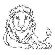 lion coloring pages hellokids com