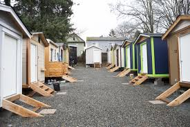 seattle teens help build tiny homes for homeless