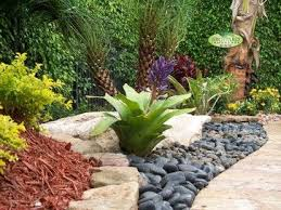 Tropical Landscape Ideas by 50 Best Decorating With Bromeliads Images On Pinterest Gardens