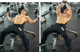 Incline Bench Muscle Group 10 Best Chest Exercises For Building Muscle