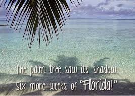 Florida Winter Meme - weather it s not just a conversation filler don t cry