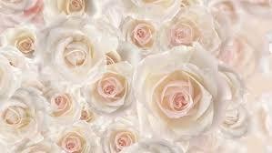 Wedding Flowers Background Rose Flower Backgrounds Stock Footage Video 459628 Shutterstock